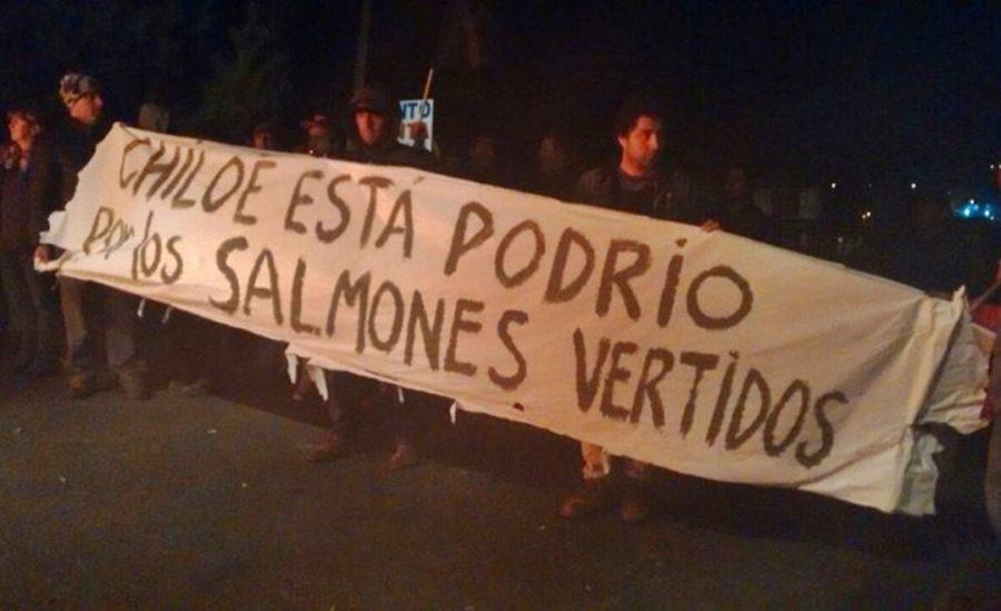 chiloe-protesta-2016-5-31e5i2m9bxi93smjczowzu