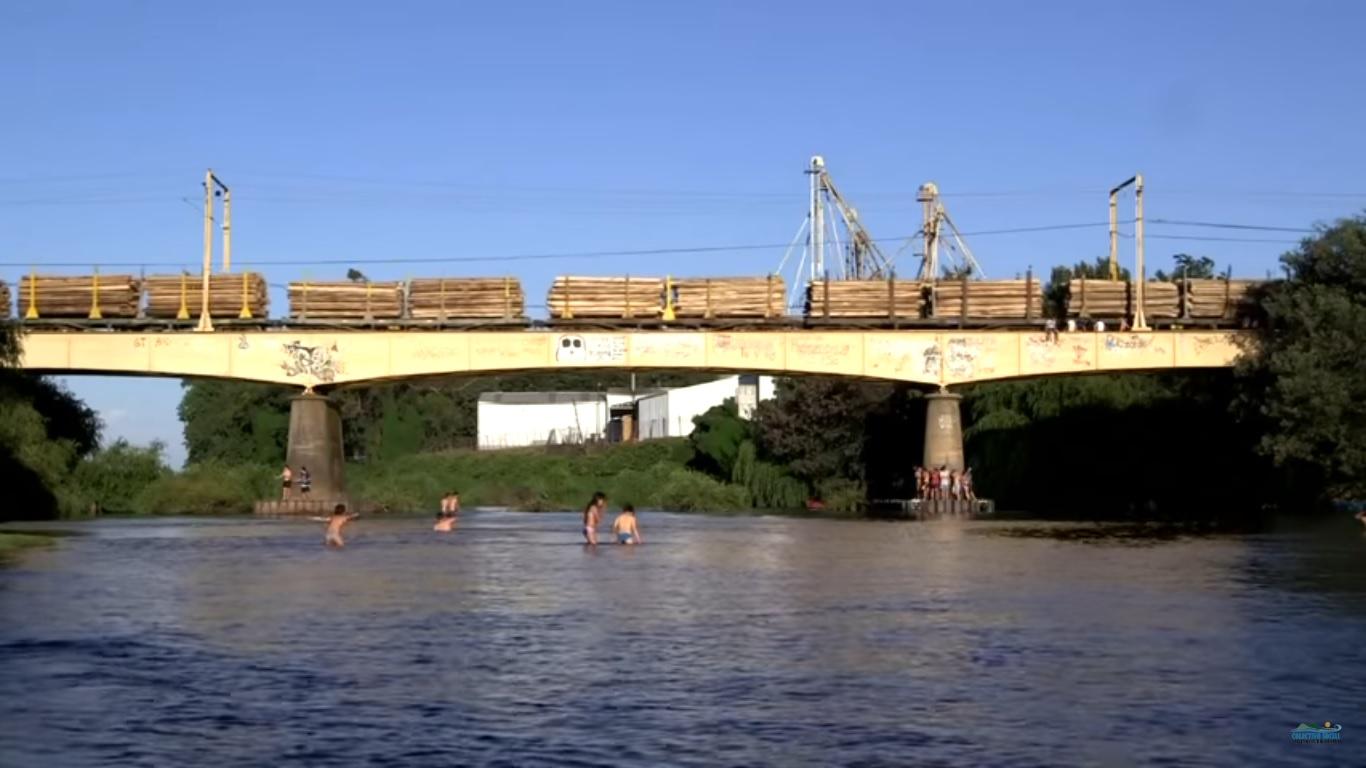 rio renaico