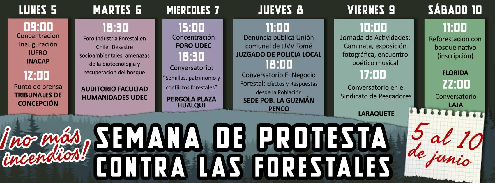 cronograma forestales.jpg