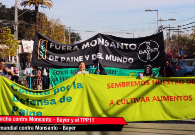 [Video] Marcha contra Monsanto-Bayer y TPP 11 en localidad de Paine.