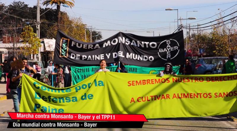 [Video] Marcha contra Monsanto-Bayer y TPP 11 en localidad de Paine.