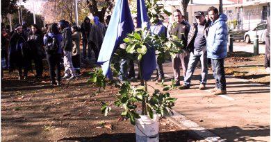 [Comunicado] Temuko: Presos Políticos Mapuche invitan a ceremonia de We Tripantu