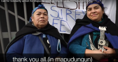 [Video] Call for Solidarity actions and  visibility actions from Mapuche spiritual leader's spokeswomxn