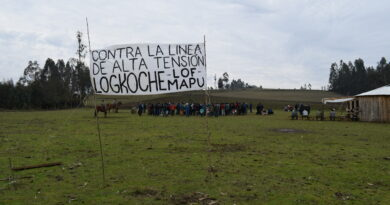 [Comunicado] Pu Lof y comunidades Mapuche de Makewe se oponen a instalación de subestación y tendido eléctrico de alta tensión