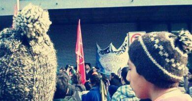 [Comunicado + Audio] Pitrufquén: Individuos armados golpean y torturan a jóven mapuche del Lof Karilafken