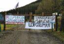 [Comunicado] Lov Provoque y Lov Coliman del territorio lavkenche Elicura inician recuperación territorial
