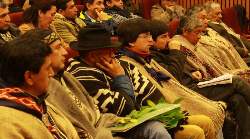 Comunidades mapuche exponen en la última sesión que investiga irregularidades en la compra de tierras mapuche