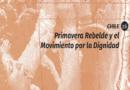 Primavera Rebelde y el Movimiento por la Dignidad
