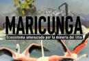 Se estrenará documental sobre las amenazas de la explotación de Litio en el Salar de Maricunga de Copiapó