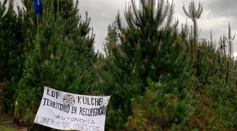 [Comunicado] Lof Külche Mapu ante inicio de recuperación territorial comuna de Lanco