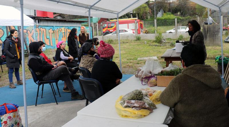 Se reactiva en Panguipulli un espacio para intercambio de alimentos sanos de campo